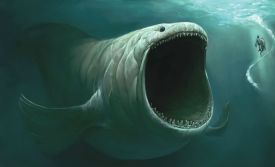 Great-White-Shark-Attack-By-Sea-Monster-Swallows-Small-Shark-Is-It-The-Bibles-Leviathan-video